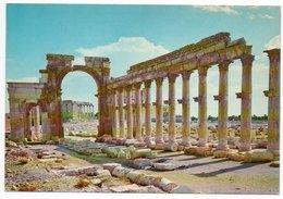 SYRIA/SYRIE - PALMYRA GREAT COLONNADE - Siria