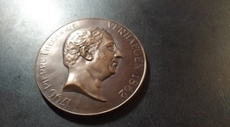 Médaille Université Libre De Bruxelles. Pierre Théodore Verhaegen. Hommage - Belgium