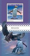 SIERRA LEONE 2018 - Penguins S/S. Official Issue. - Pinguïns & Vetganzen