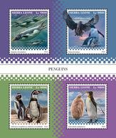 SIERRA LEONE 2018 - Penguins. Official Issue. - Pinguïns & Vetganzen