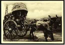 Rom / Roma  -  Costumi Romani  -  Currettiere A Vino  -  Ansichtskarte Ca.1920   (9371) - Transports