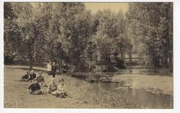 BELGIQUE - CASTEAU - Etablissement Des Dominicaines Du Sacré Coeur - Un Coin Du Parc - L'étang - 1960 (O24) - Soignies
