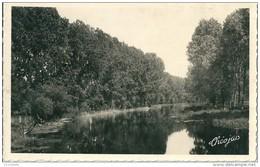 17 TONNAY BOUTONNE -   La Boutonne Vue Du Pont - Autres Communes