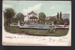 D6 /   Freiburg Litho 1906 Stadtgarten - Unclassified