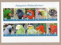 Privatpost - Nordkurier -  10 W Papageien Parrot Loro Papagaio Im KB - Selten - Perroquets & Tropicaux