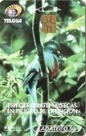 *GUATEMALA* -  Scheda Usata - Uccelli