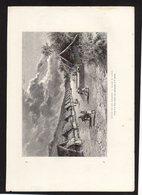 GRAVURE 18X28....paysage Des Iles Mariannes.....réf  040119016 - Documents Historiques