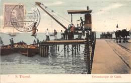 Sao Tome Et Principe / 08 - Desembarque De Gado - Belle Oblitération - Sao Tome Et Principe