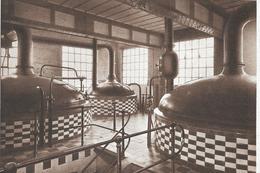 Hingene  (brouwerij Scaldis ) - Bornem