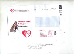Pap Reponse Ciappa Chien Guide Aveugle + Destineo - Entiers Postaux