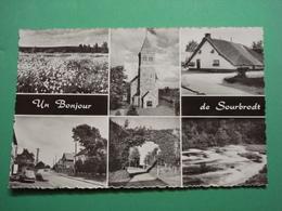Un Bonjour De Sourbrodt Hautes Fagnes - Weismes