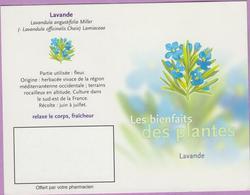 Calendrier °° 2003 - Labo - Lavande - 7x10 - Calendari