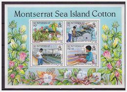 0667 Montserrat 1985 Katoen Cotton Industry SPECIMEN S/S MNH - Fabrieken En Industrieën