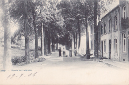 Ciney: Route De Leignon.(1906) - Ciney