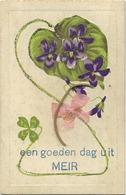 MEIR  :  Een Goedendag Uit  -   Reliëf Kaart   (  Geschreven Met Zegel 1 Cent 190x ) - Hoogstraten