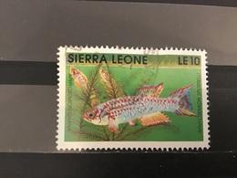 Sierra Leone - Vissen (10) 1991 - Sierra Leone (1961-...)