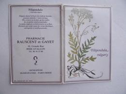 CALENDRIER De POCHE 1993 Publicité PHARMACIE RAUSCENT & GAYET à AVALLON 89 - Calendriers