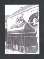DENDERMONDE - TERMONDE - ST. GILLIS - 'T ROS VAN DEN HALT (FOTOKAART)   (9571) - Dendermonde