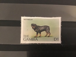 Gambia - Honden (D1) 1997 - Gambia (1965-...)