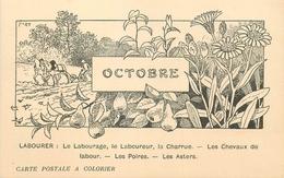 CARTE POSTALE A COLORIER LES MOIS - OCTOBRE - LABOUREUR CHARRUE ... - Autres