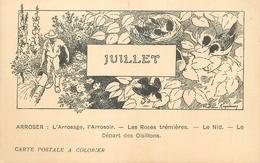 CARTE POSTALE A COLORIER LES MOIS - JUILLET - ARROSAGE ARROSOIR ... - Autres