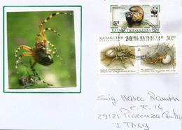 Spiders, Araignées Du Kazakhstan Sur Lettre Adressée En Italie - Insectes