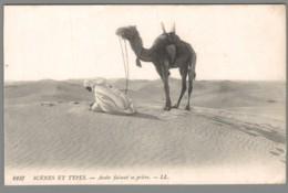 CPA Afrique - Scènes Et Types - Arabe Faisant Sa Prière - Cartes Postales