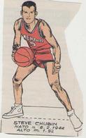 STEVE CHUBIN...SIMMENTHAL...NAZIONALE...PALLACANESTRO..VOLLEY BALL - Tarjetas