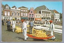 NL.- ALKMAAR. Alkmaarse Kaasmarkt.  Cheese Market. Marché Aux Fromages. - Voorstellingen