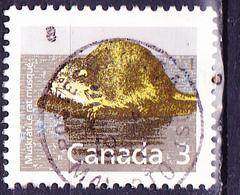 Kanada - Bisamratte (Ondatra Zibethica) (Mi.Nr.: 1104) 1988 - Gest Used Obl - 1952-.... Règne D'Elizabeth II