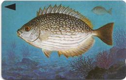 Bahrain - Fish Of Bahrain - Streaked Rabbitfish - 39BAHQ - 1996, 200.000ex, Used - Baharain