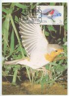 Malta 1987 FDC Scott 690 Maxicard Malta Ornithological Society 25th Anniversary - Malta