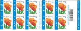 """Postzegelboekjes.  Bloemen. Tulipe """"orange"""" - Ongebruikt"""