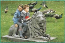 ! - Carte - Deux Petits Garçons Sur Une Statue De Lion - Scènes & Paysages