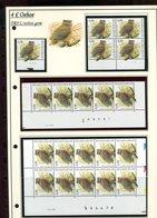 Belgie 3270 TRFL Buzin Vogels Birds Feuille De Collection Numéro De Planche Plaatnummer Drukdatum - 1985-.. Oiseaux (Buzin)
