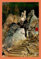 A713 / 551 Belgique Grotte De HAN Sur LESSE Bouldoir De Proserpine - België