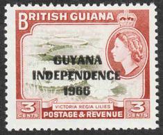Guyana - Scott #1A MH (2) - Guyana (1966-...)