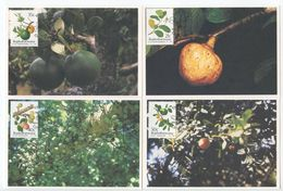 South Africa-Bophuthatswana 1991 4 FDC Maxicards Sc. 254-257 Edible Wild Fruit - Bophuthatswana