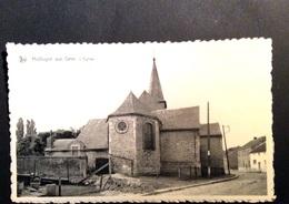 Hollogne-sur-Geer - L'Eglise - Geer