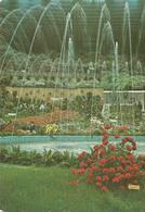 EUROFLORA 81 GENOVA 25 APRILE - 3 MAGGIO 1981  (101) - Manifestazioni