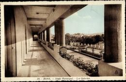 Cp Bone Algerien, Stade Municipal, Les Galeries - Alger