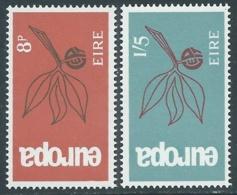 1965 EUROPA UNITA CEPT IRLANDA MNH ** - F9-5 - Europa-CEPT