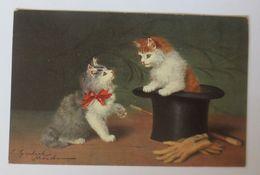 Katzen, Zylinder,    1907, S. Sperlich ♥  - Tierwelt & Fauna