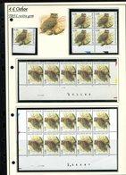 Belgie 3270 TRFL Buzin Vogels Birds Feuille De Collection Numéro De Planche Plaatnummer Drukdatum - 1985-.. Uccelli (Buzin)