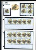 Belgie 3270 CPFL Buzin Vogels Birds Feuille De Collection Numéro De Planche Plaatnummer Drukdatum - 1985-.. Oiseaux (Buzin)