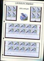 Belgie 2986 CPFL Buzin Vogels Birds Feuille De Collection Numéro De Planche Plaatnummer Drukdatum - 1985-.. Birds (Buzin)