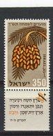 ISRAEL - Y&T N° 159** - Fruit - Dattes - Israel