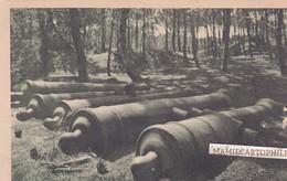ROYAN - Dépt 17 - Forêt De La Coudre - Canons Ensablés Restés D'un Fort Remontant à Napoléon 1er - Royan