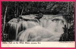 Jamaïque - Clifton Falls On The White River - Jamaica - W.I. - J. JOHNSTON - Jamaïque