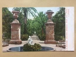 ITALY - Palermo - Giardino Botanico - Viale Delle Palme E Fontana - Photochromiekarte 3637 - Palermo